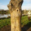 arbre 003