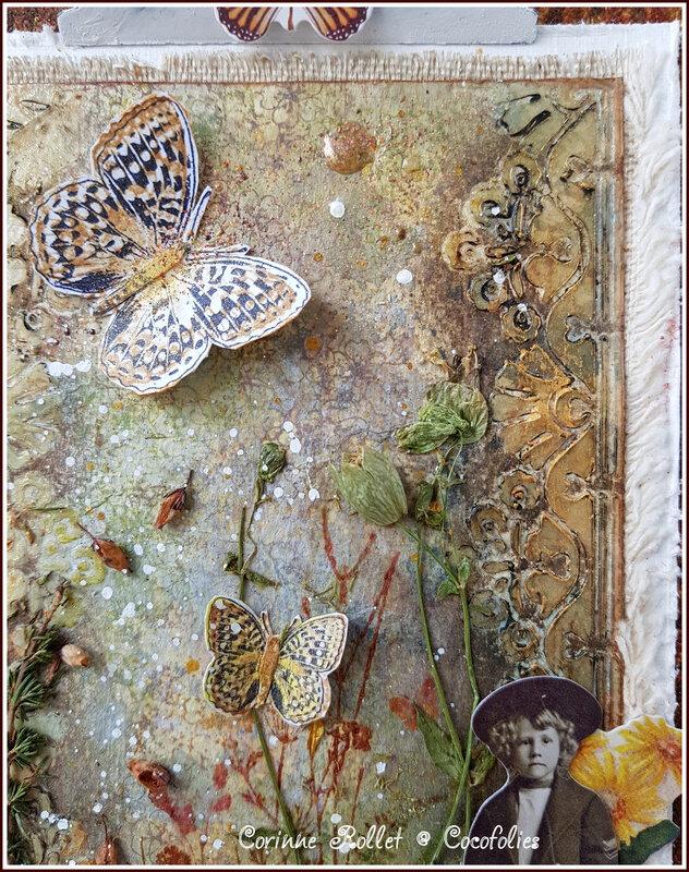 Coco_vintagepanelbutterflies_3