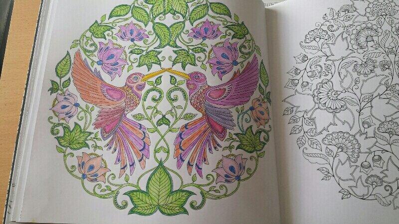 Jardin Secret Les Coloriages De Carole