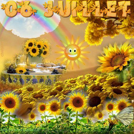 _ 1 CHAISARD 006 JUILLET