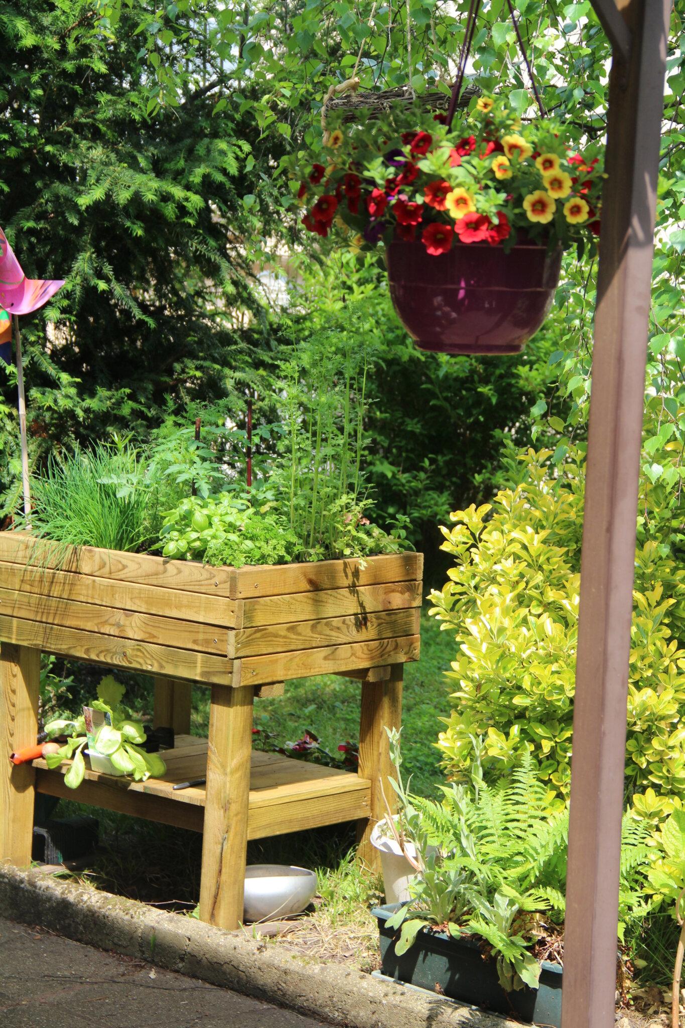 Bac Pour Arbuste De Jardin bac pour aromatiques au jardin - pouce ! cà pousse ! ! !