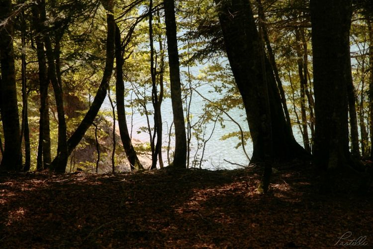 Lac Bious_13 04 08_8515