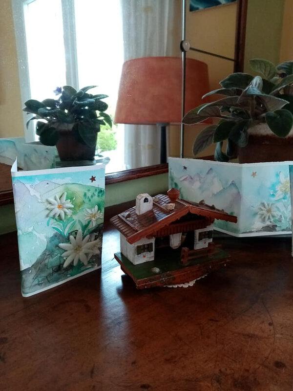 Carte Edelweiss 3