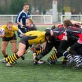 36IMG_1150T