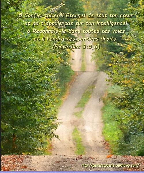 Proverbes 3