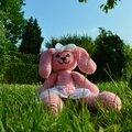 Amigurumi bunny rose