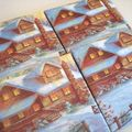 Winter house coasters