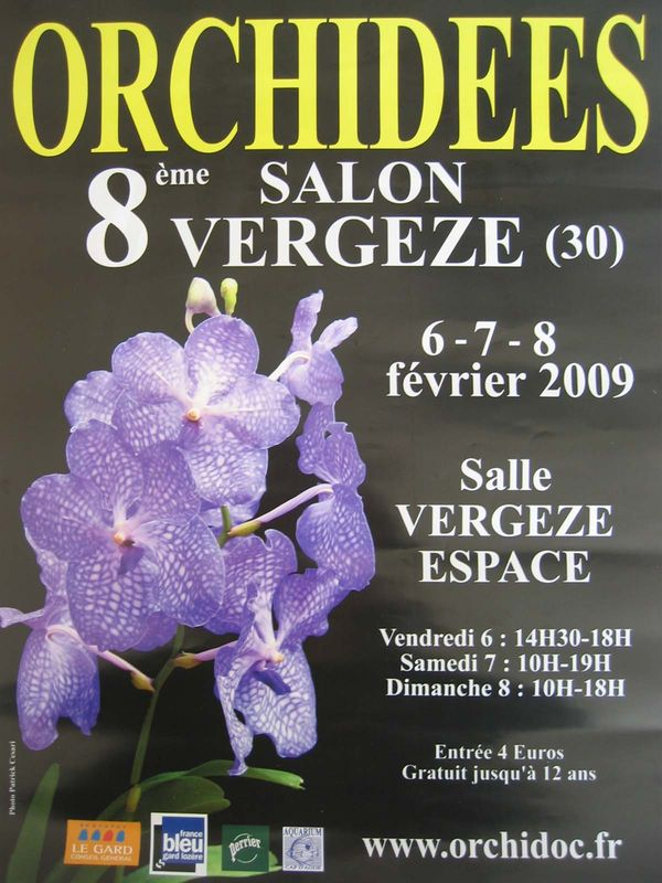 R_ve_d_orchid_es_8_me_salon__VERGEZE_30