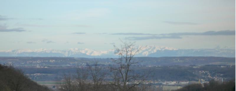 DANS LE MACIF DU PILAT - VUE SUR LA CHAINE DES ALPES - 09 FEVRIER 2014