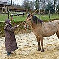 samedi stage d'équitation éthologique Franck Petetin