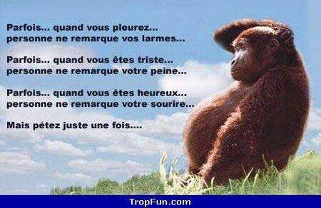 bouffer_le_cul_1_