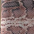 Portefeuille - Porte monnaie - Porte cartes 'Python & Chaînes '