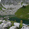 ******Lac de Darbon 08.14