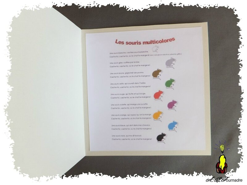 ART 2015 04 souris multicolores 3