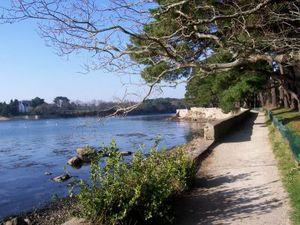 port-anna-sene-golfe-morbihan-balade-preferee-bord-mer_223060
