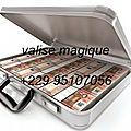 Valise magique et magnétique multiplicateur d'argent