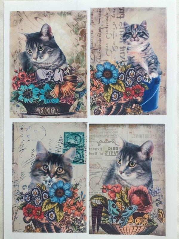 Pochette petits chats et fleurs 1