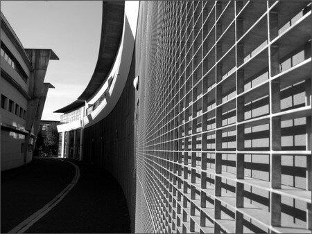 urban_life