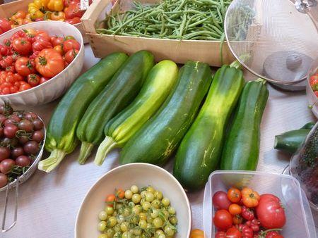 10-récolte du jour (6)