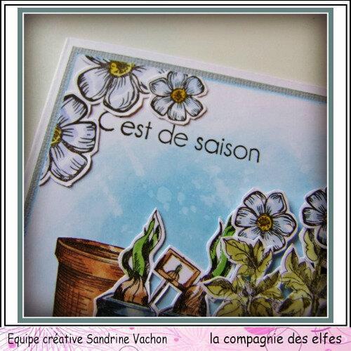 Carte jardinage C'EST DE SAISON dt LCDE (2)