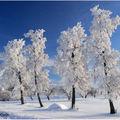 Jour de neige.