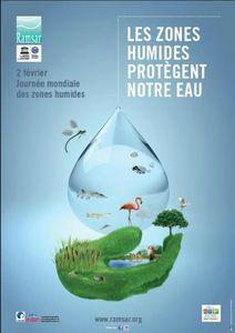 affiche journée mondiale des zones humides 2013