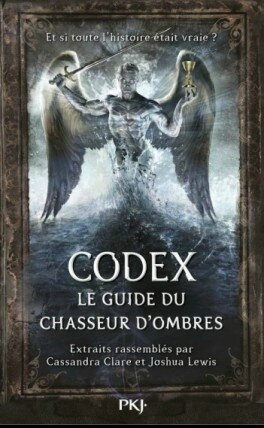 codex---le-guide-du-chasseur-d-ombres-360528-264-432
