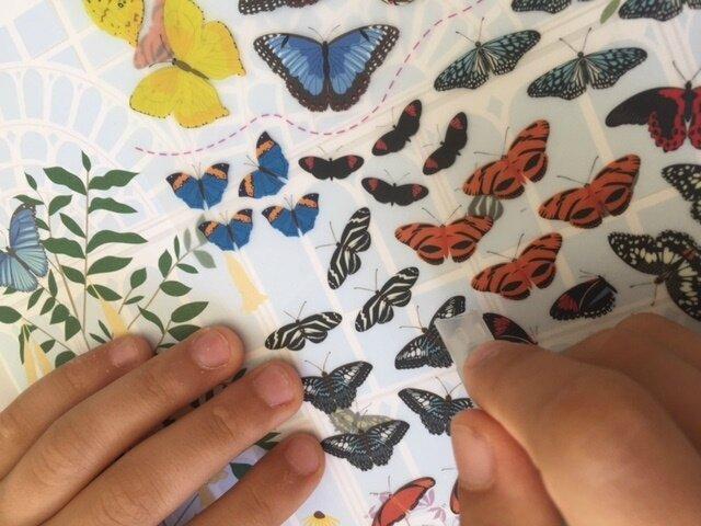 papillons et autres petites bêtes décalcomanies 3