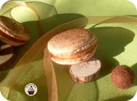 Macarons_pomme_cannelle_3