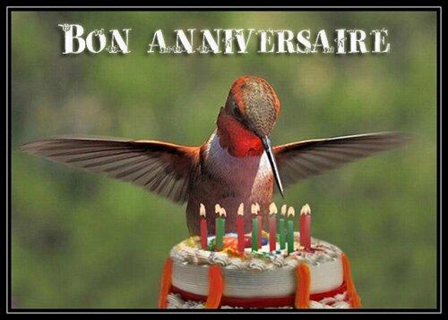 joyeux anniversaire colibri