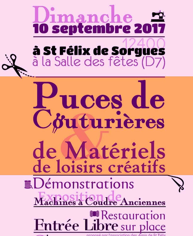Fly-puces-2017-couleur