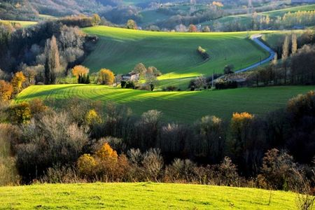 campagne_646459