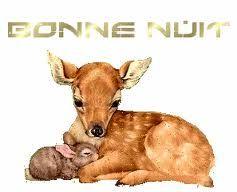 bonne_nuit___