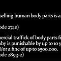 Ivg : le planning familial américain reconnaît vendre des organes de fœtus