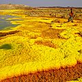local agent of abyss land tour indicate the way in danakil