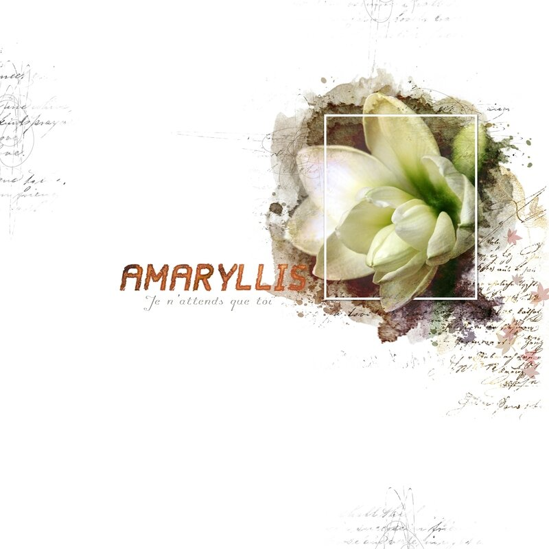 Amaryllis_Talie_DCS_Template01_oct-06b