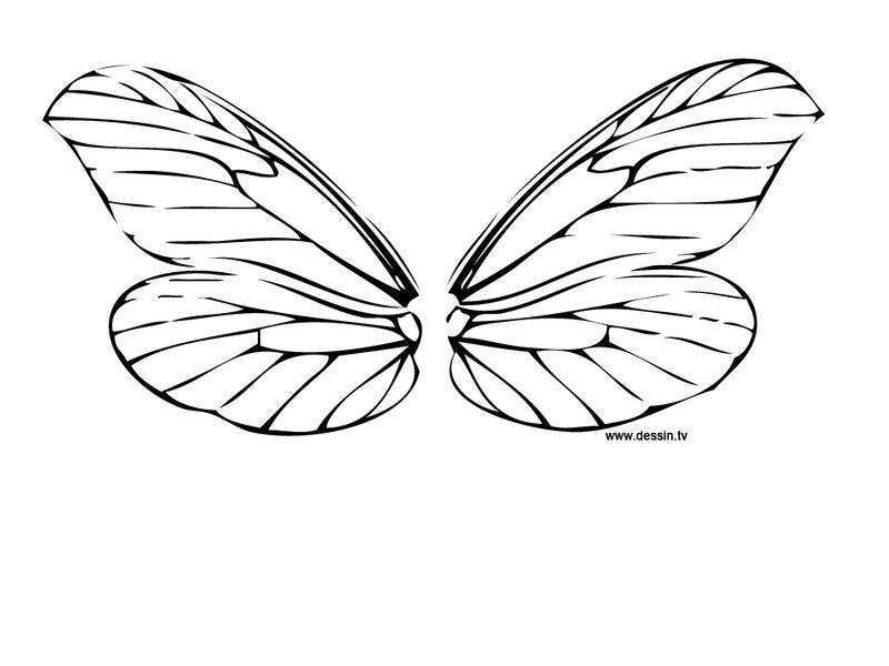coloriage-ailes-de-libellule
