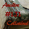 #1j1ancetre - #1j1collateral - 12 juillet