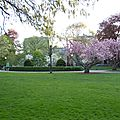 BOSTON COMMON PARK (172)