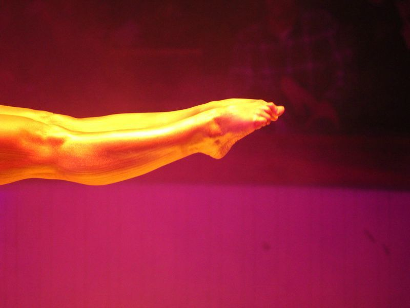 Cirque d'hiver- gold-plated legs