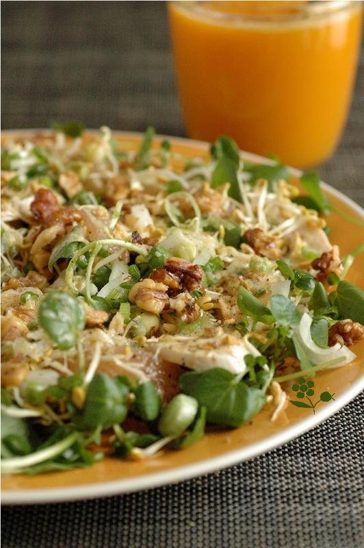 Salade cresson, poulet, pamplemousse, graines germées, noix_2