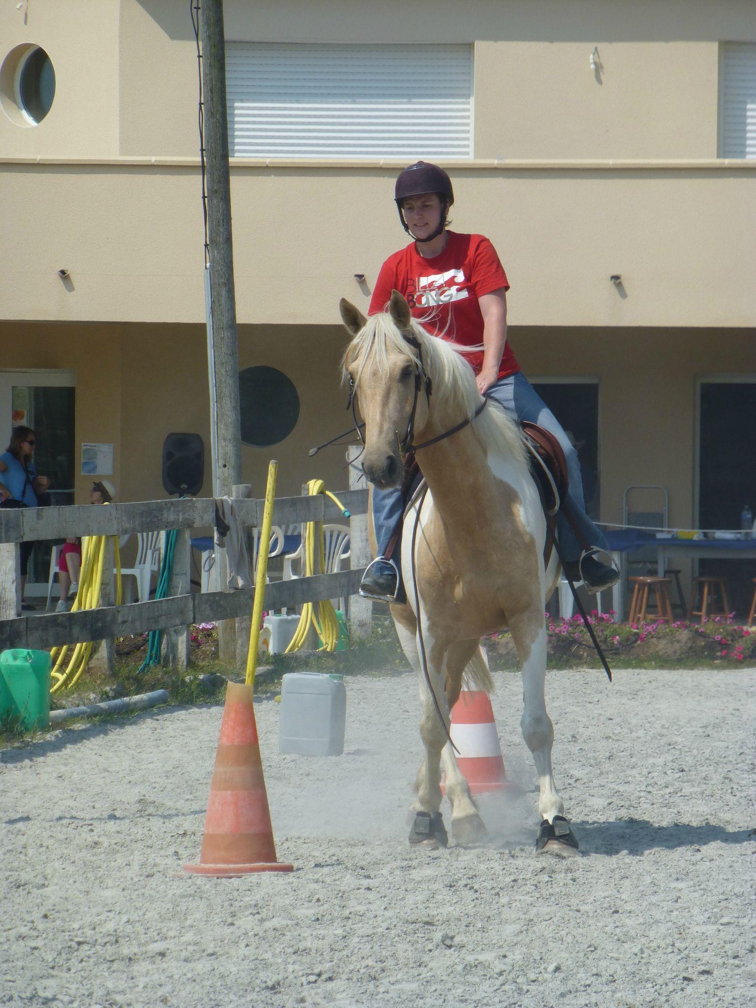 Jeux équestres manchots 2013 (233)