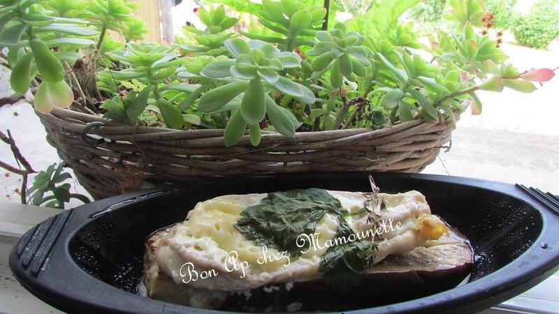 Aubergine à l'émincé de poulet et fromage en papillote 013