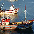 Fishing_boats_in_Brittany