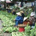 marchandes de bananes