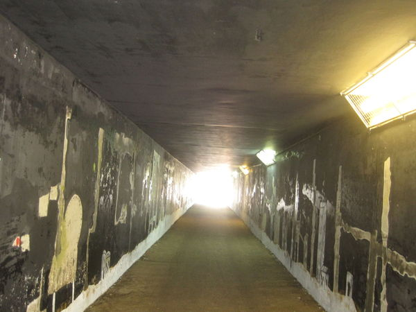 parilly_bron_tunnel_fresq_1_parc