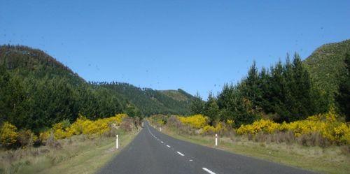Sur la route de Taupo