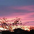Lever de soleil 081118