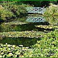 Les jardins d'eau de carsac-alliac [ 24200]