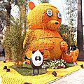 carnaval nice 2015 013